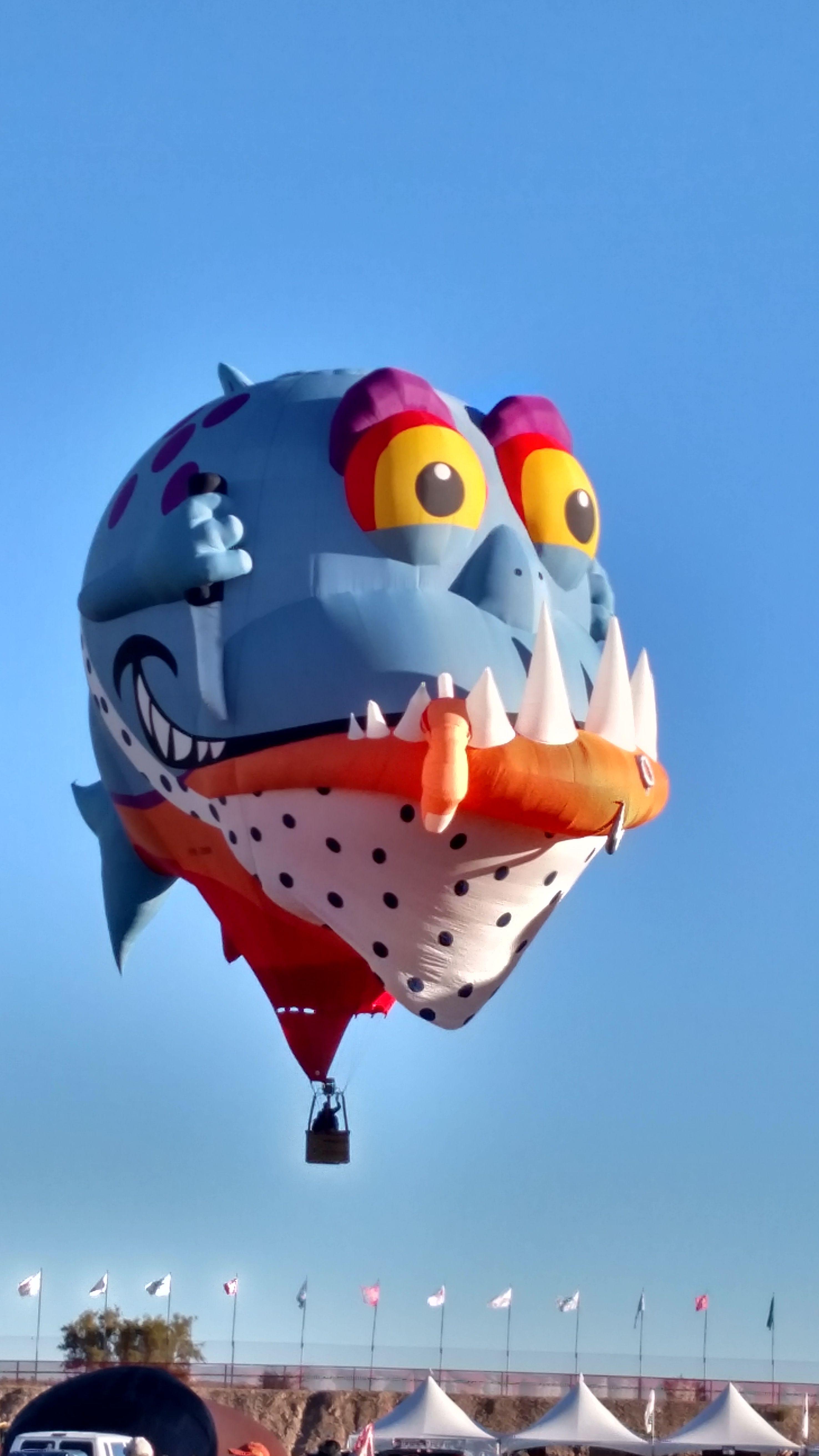 monster balloon Hot air balloon festival, Air balloon