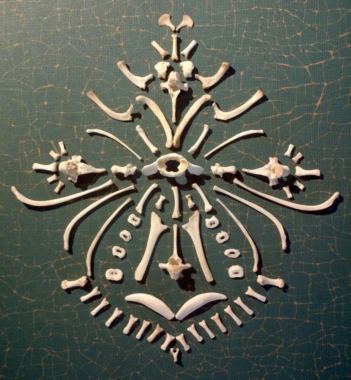 Autumn Edwards makes bone art!