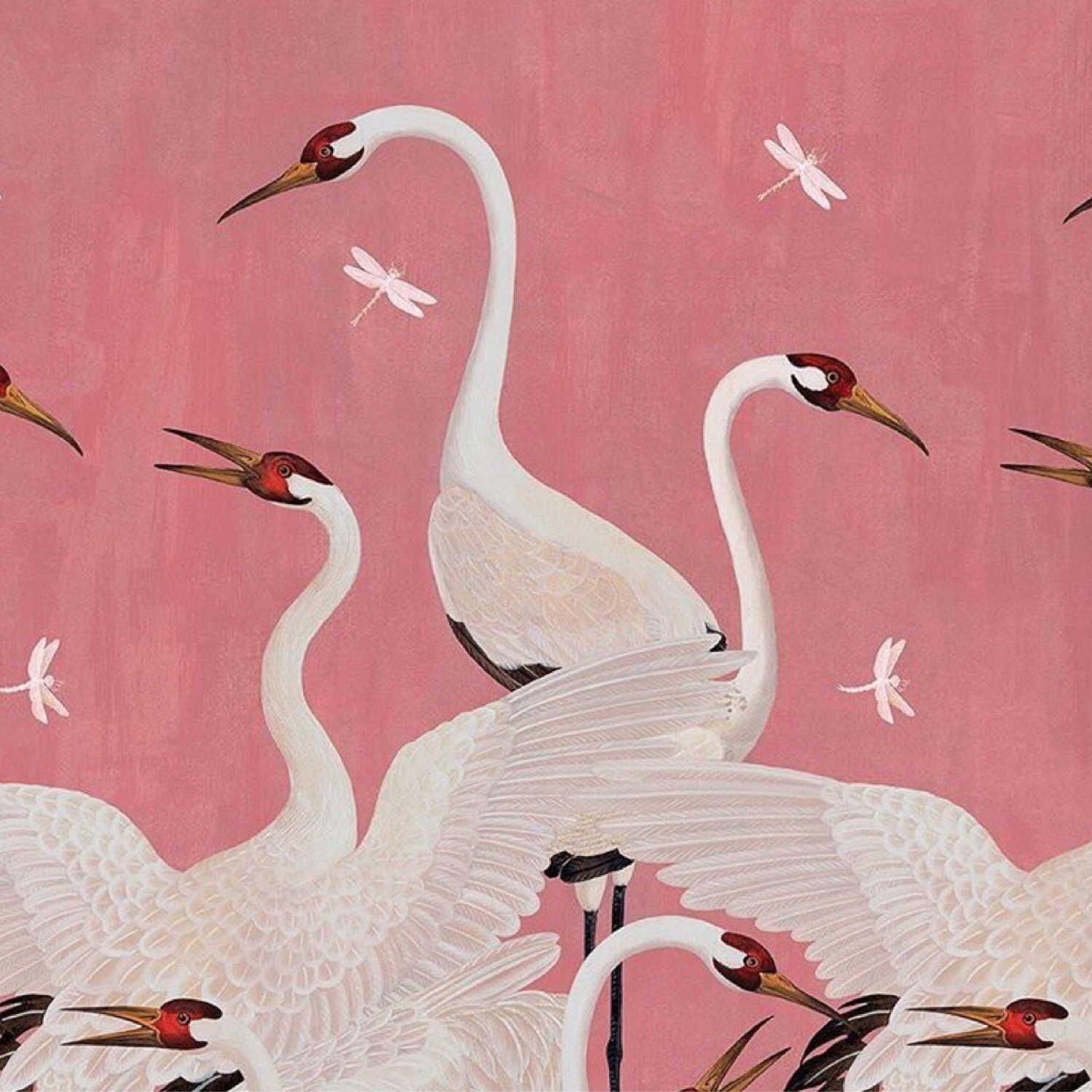 """gucci wallpaper bird""的图片搜索结果 Ilustrator, Bangau, dan"
