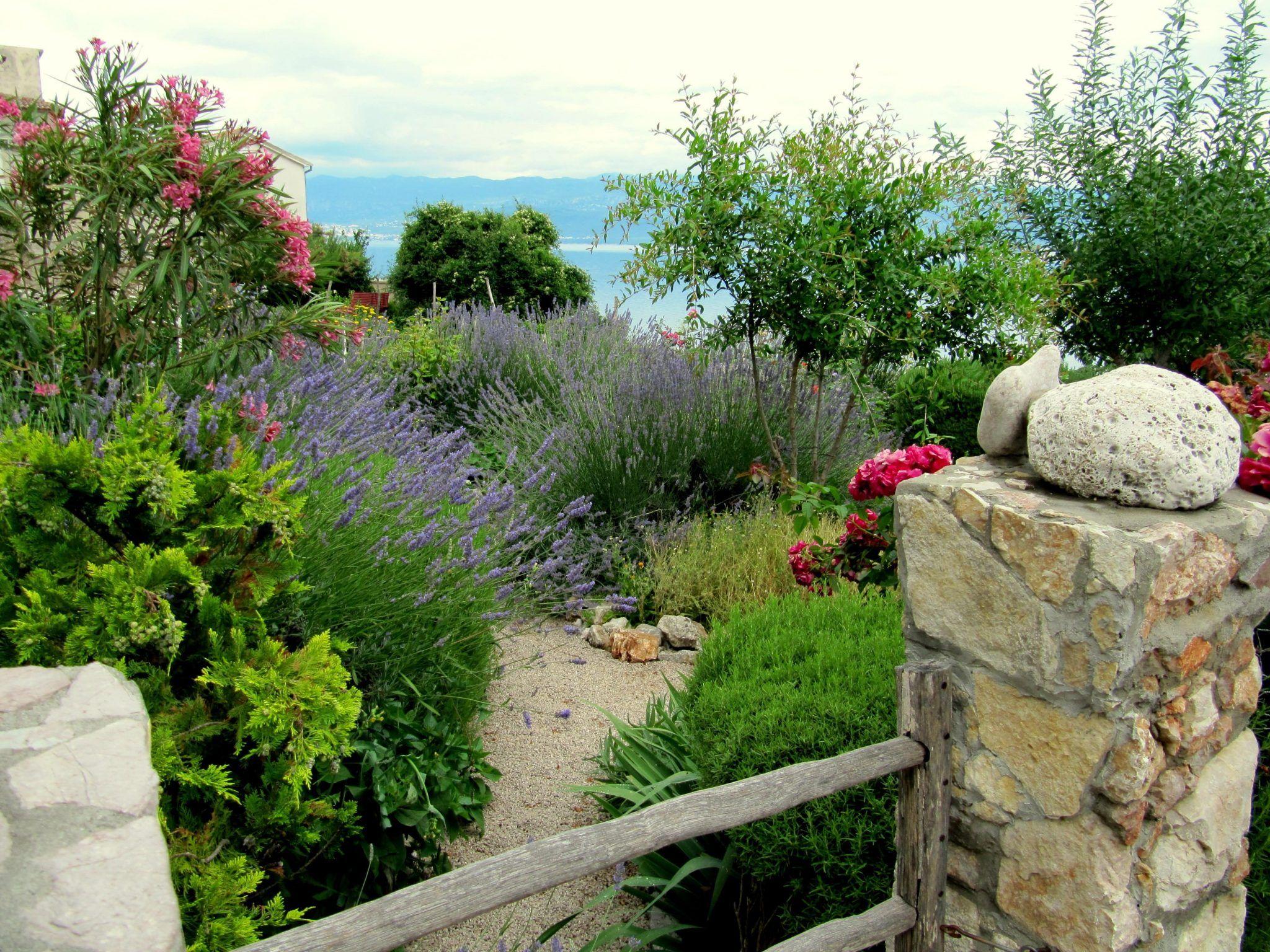 Sistemare Giardino Di Casa come sistemare il giardino di casa per le vacanze | plants