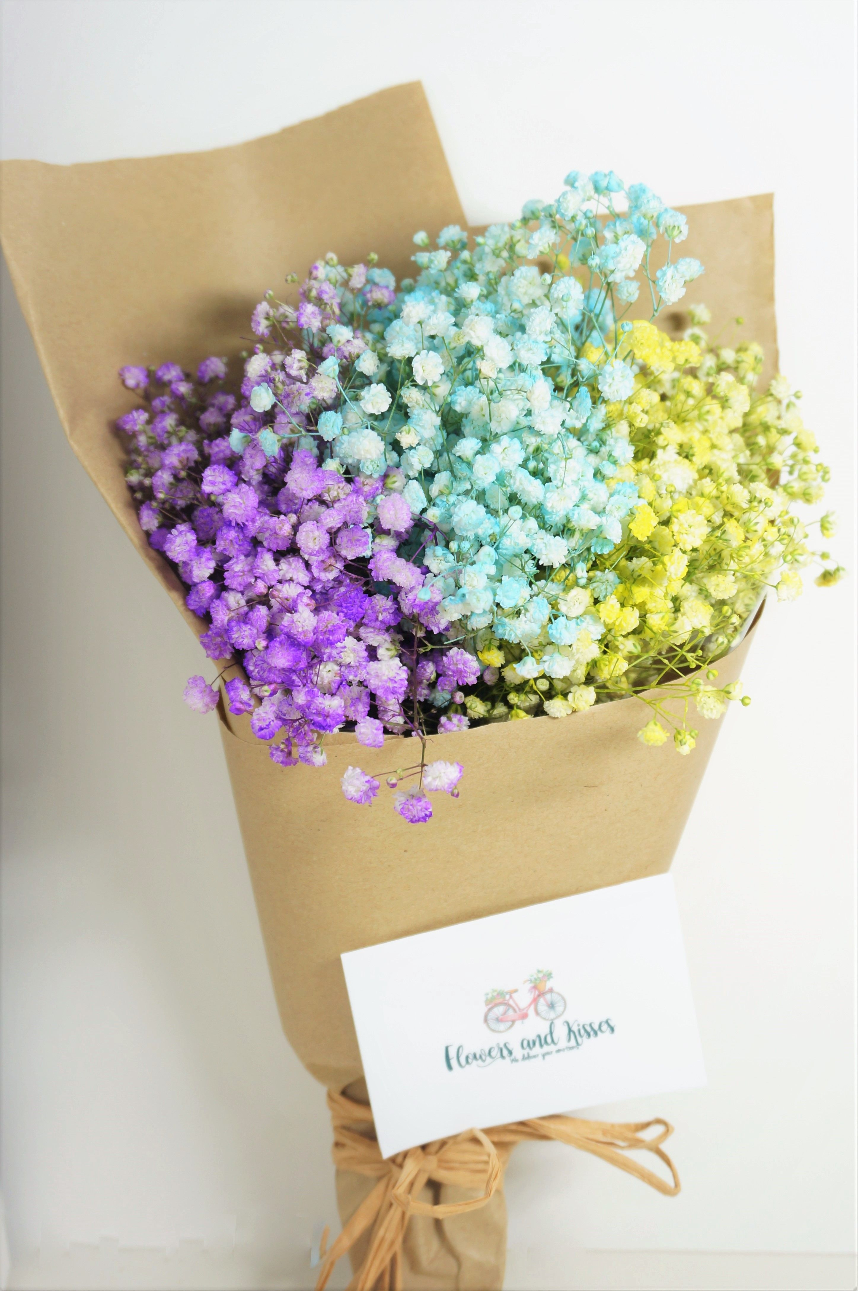 Rainbow Baby S Breath Bouquets Rainbow Babybreath Bouquet Same Day Flower Delivery Babys Breath Rainbow Baby