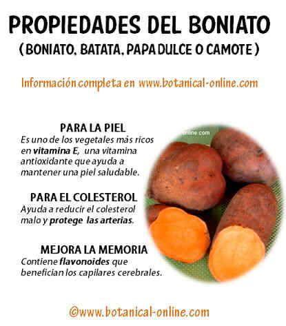 propiedades nutricionales de los boniatos