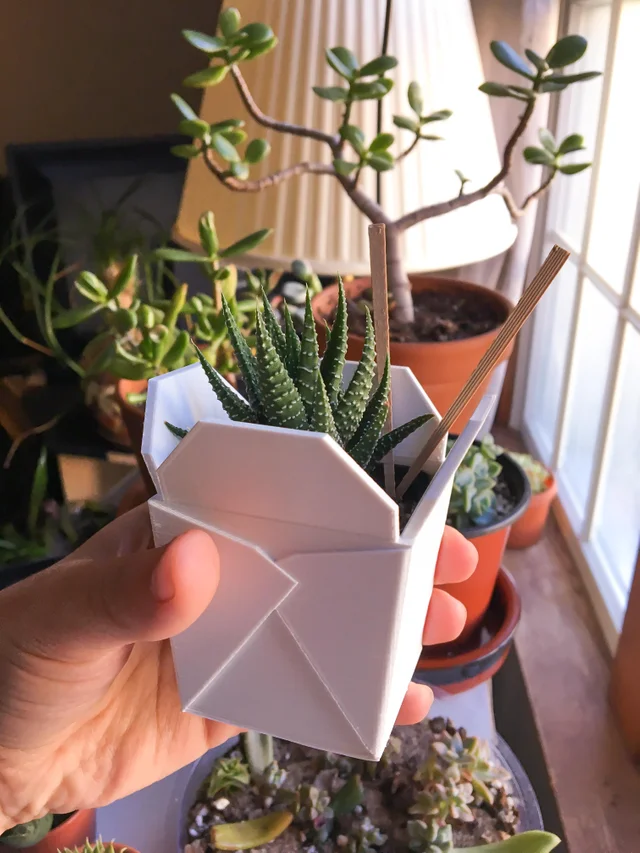 I Got The Cutest 3d Printed Planter It Even Came With Chopsticks And Drainage Holes Succulents Plant Pot Holders Planters Diy Planters