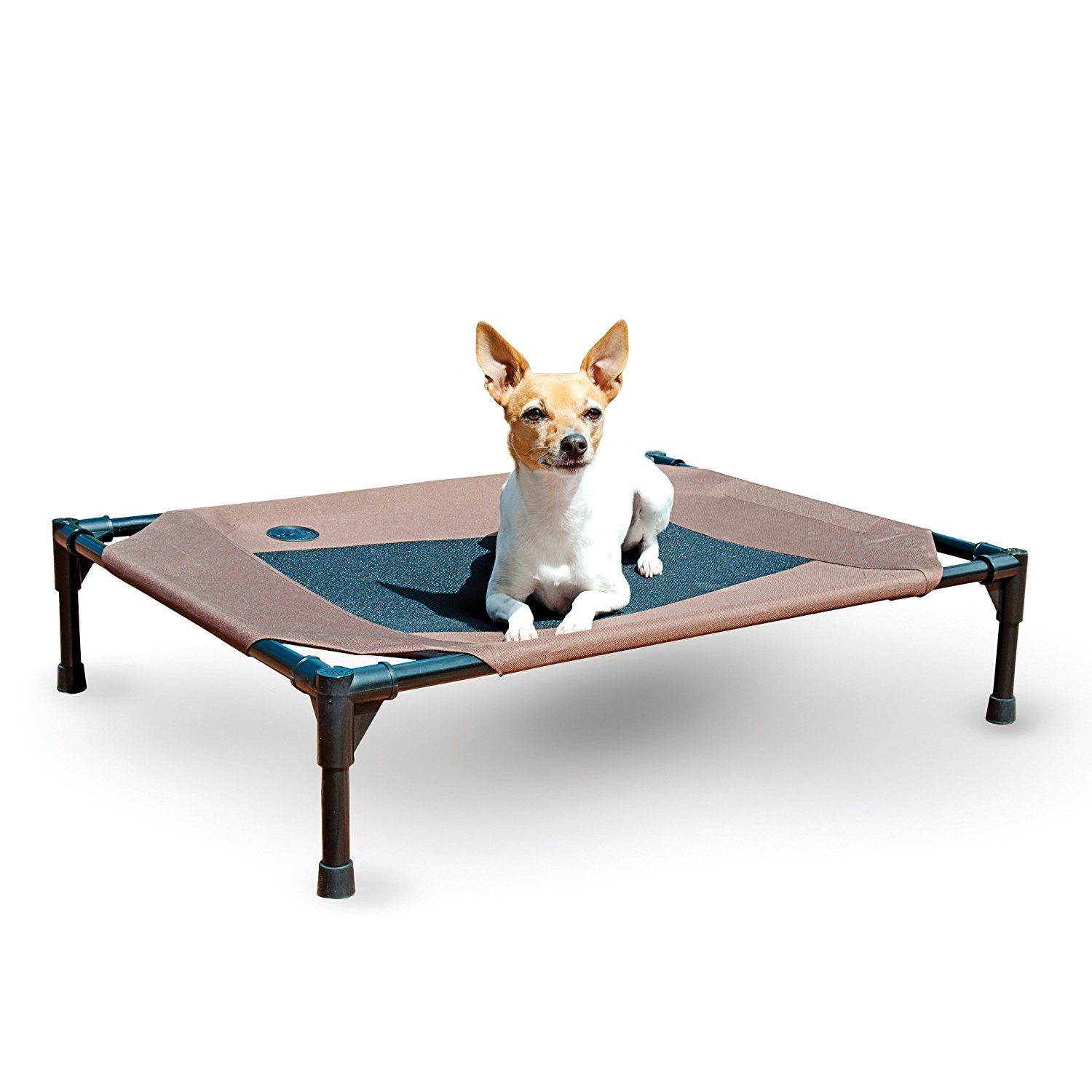 Dog Beds That Sit Off The Floor Canada. Waterproof