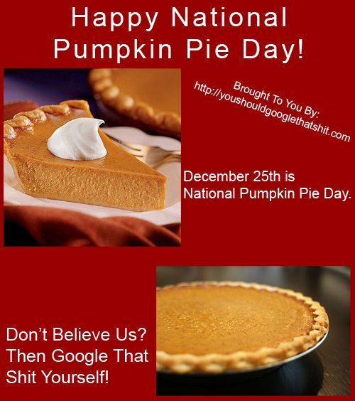 Happy National Pumpkin Pie Day Http Youshouldgooglethatshit Com Pumpkin Pie Pie Day Pie