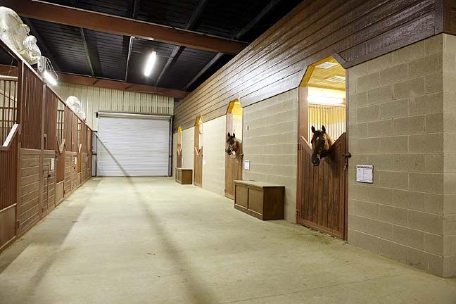 Air Conditioned Stalls At Tom Mccutcheon Reining Horses