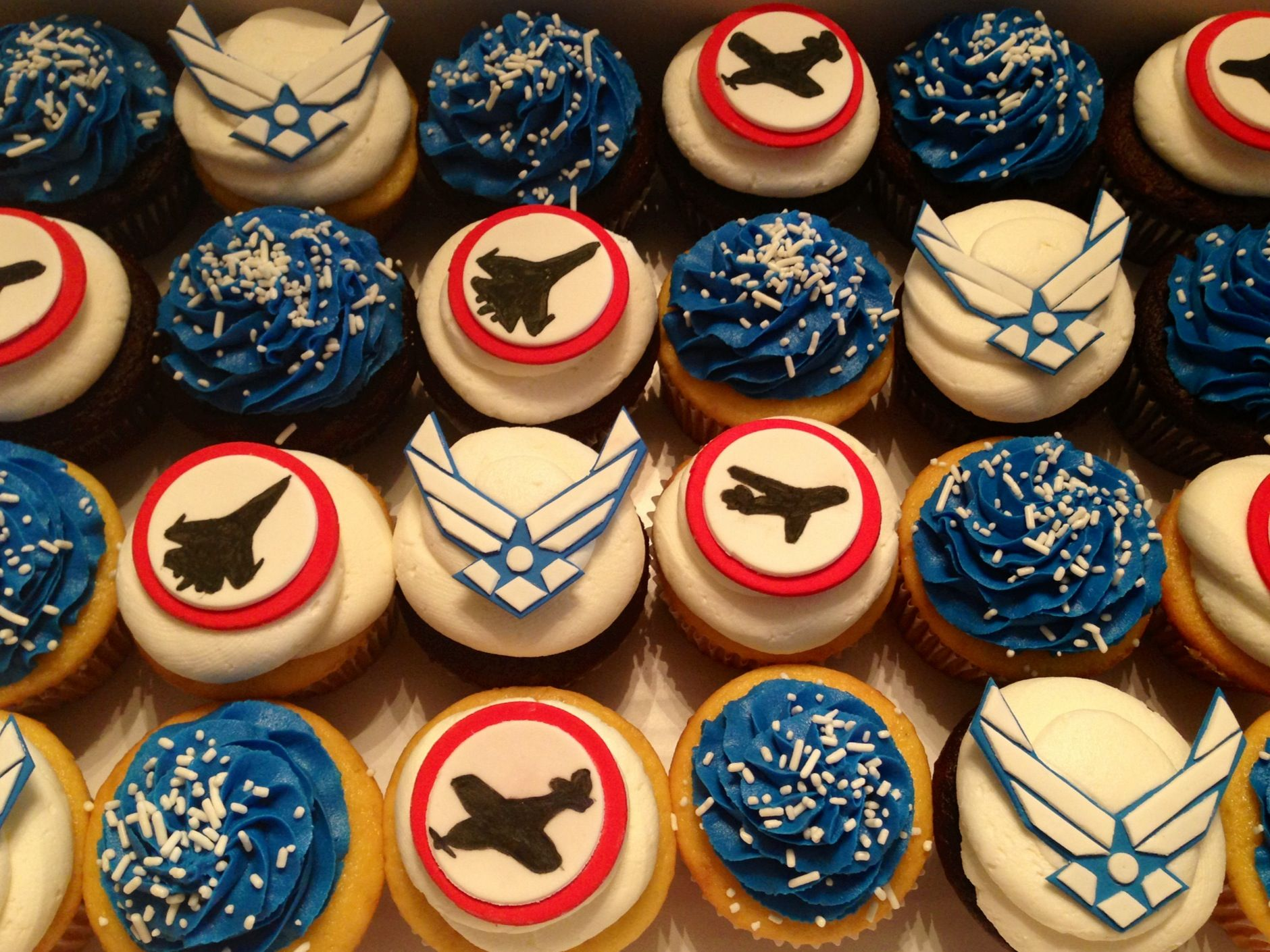 United States Air Force cupcakes made by Scrumdiliumcious