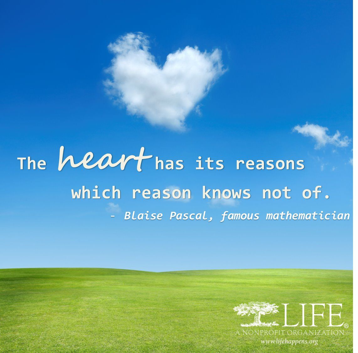 What does your heart tell you?
