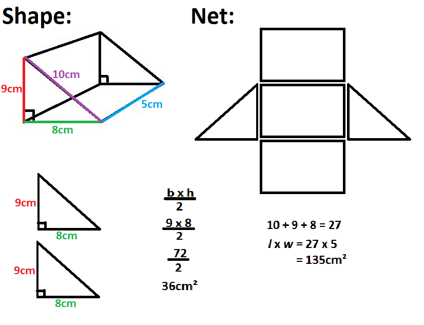 lateral and total surface area worksheets - Google Search ...
