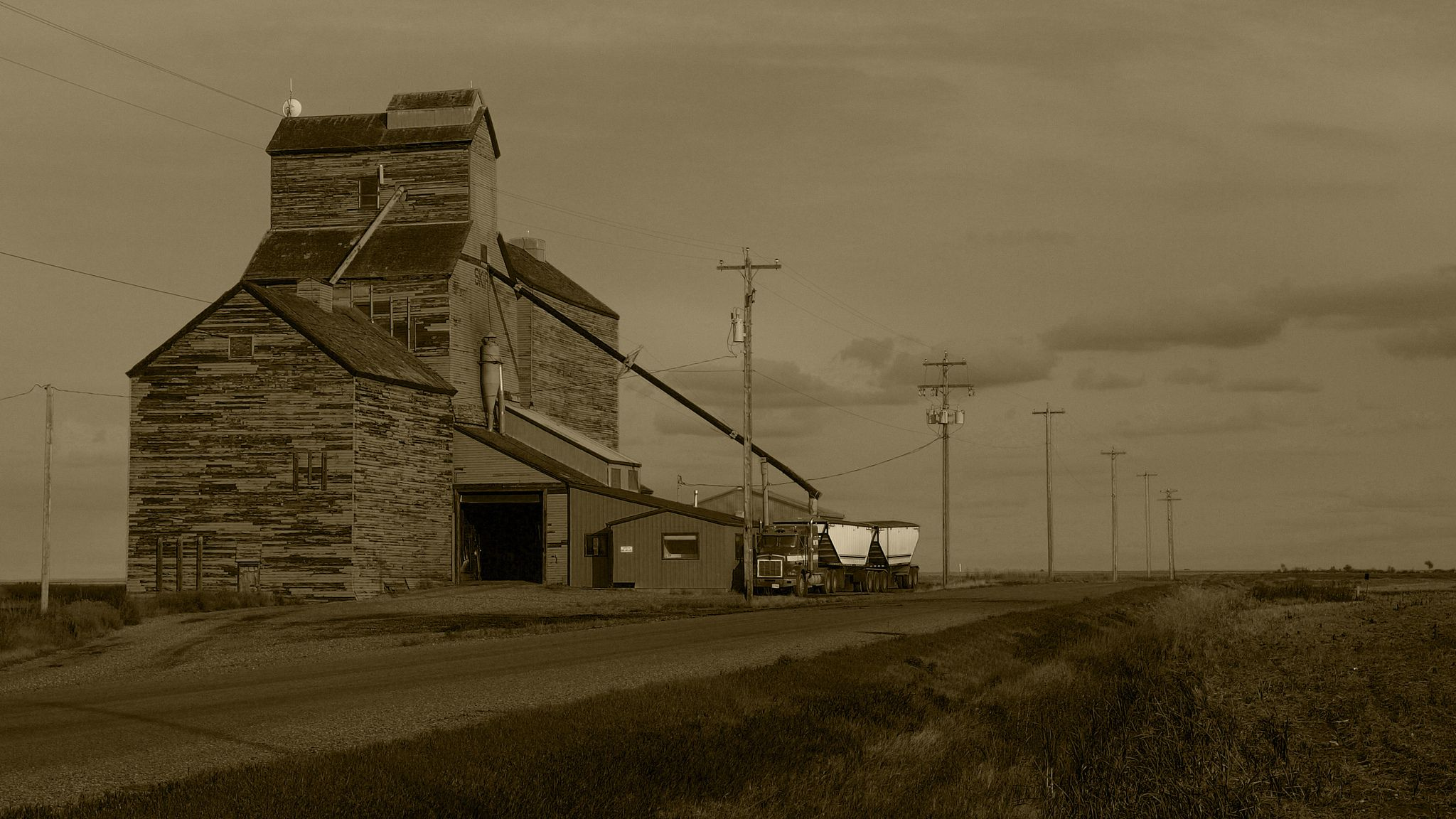 China's Smithfield Consolidates Supply Chain with Grain