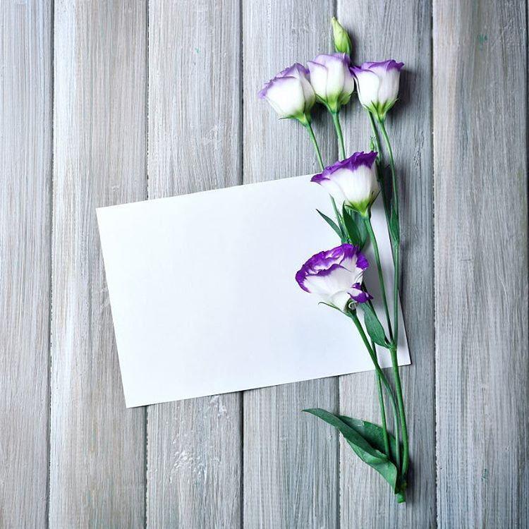 رمزيات رمزيات دينية رمزيات إسلامية صور تصاميم تصميم فوتو ورد مصاحف قرآن القرآن مصحف أزهار ورد Flower Wallpaper Paper Flowers Islamic Wallpaper Hd