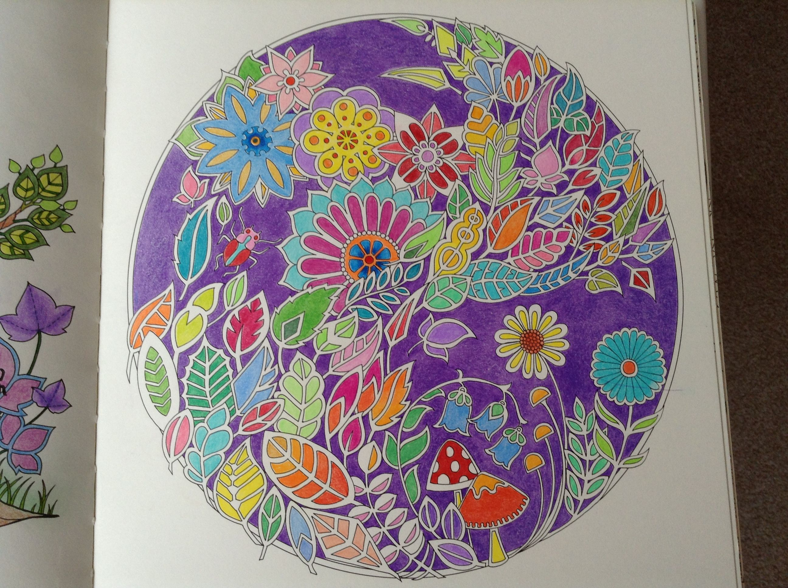 Enchanted Forest By Johanna Basford I Only Used Prismacolor Pencils On This Coloured