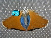 By far the niftiest feather seller I've found so far.