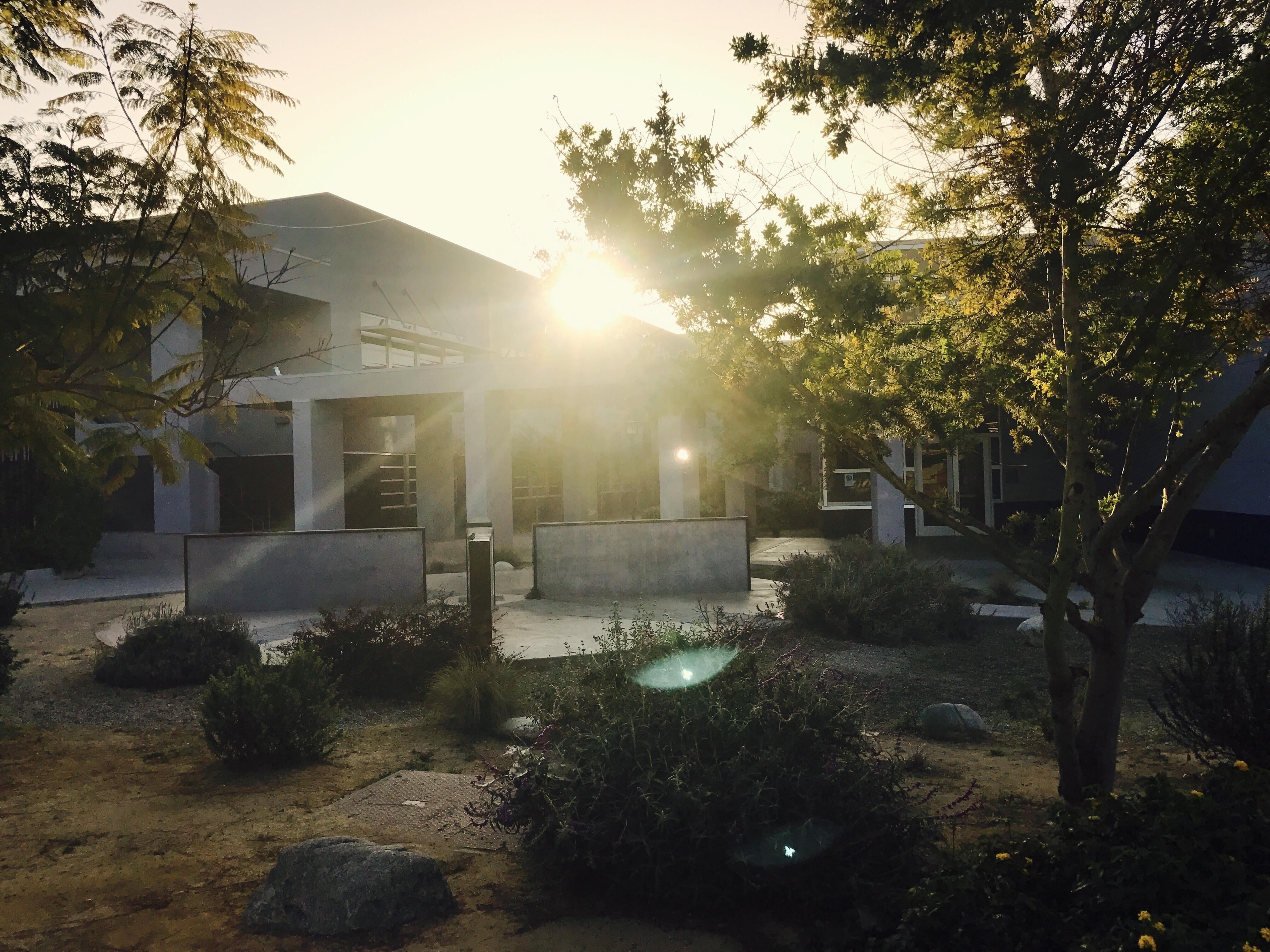 CA Sunrise