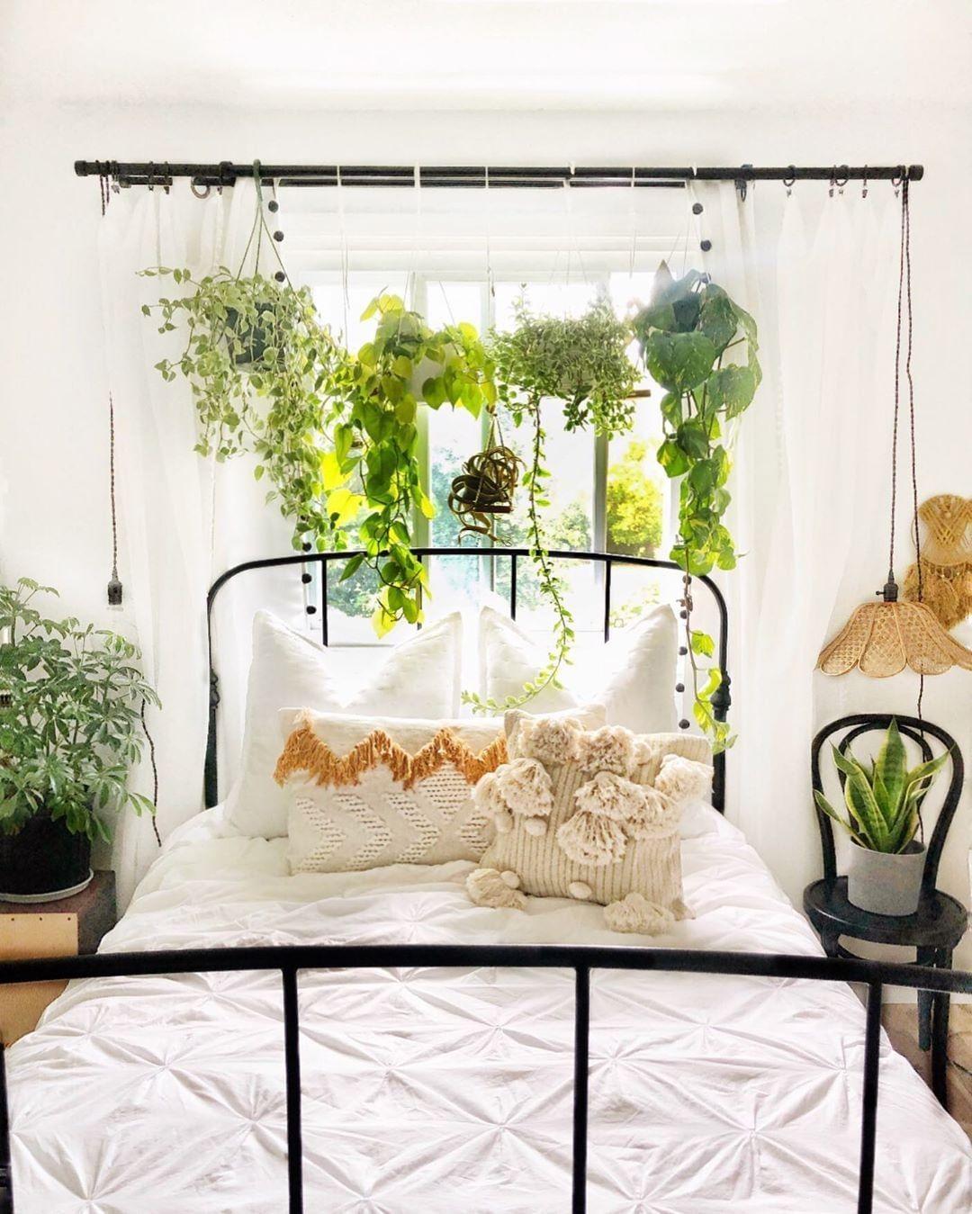 Wir können nicht übersehen, wie schön die hängenden Pflanzen in ...