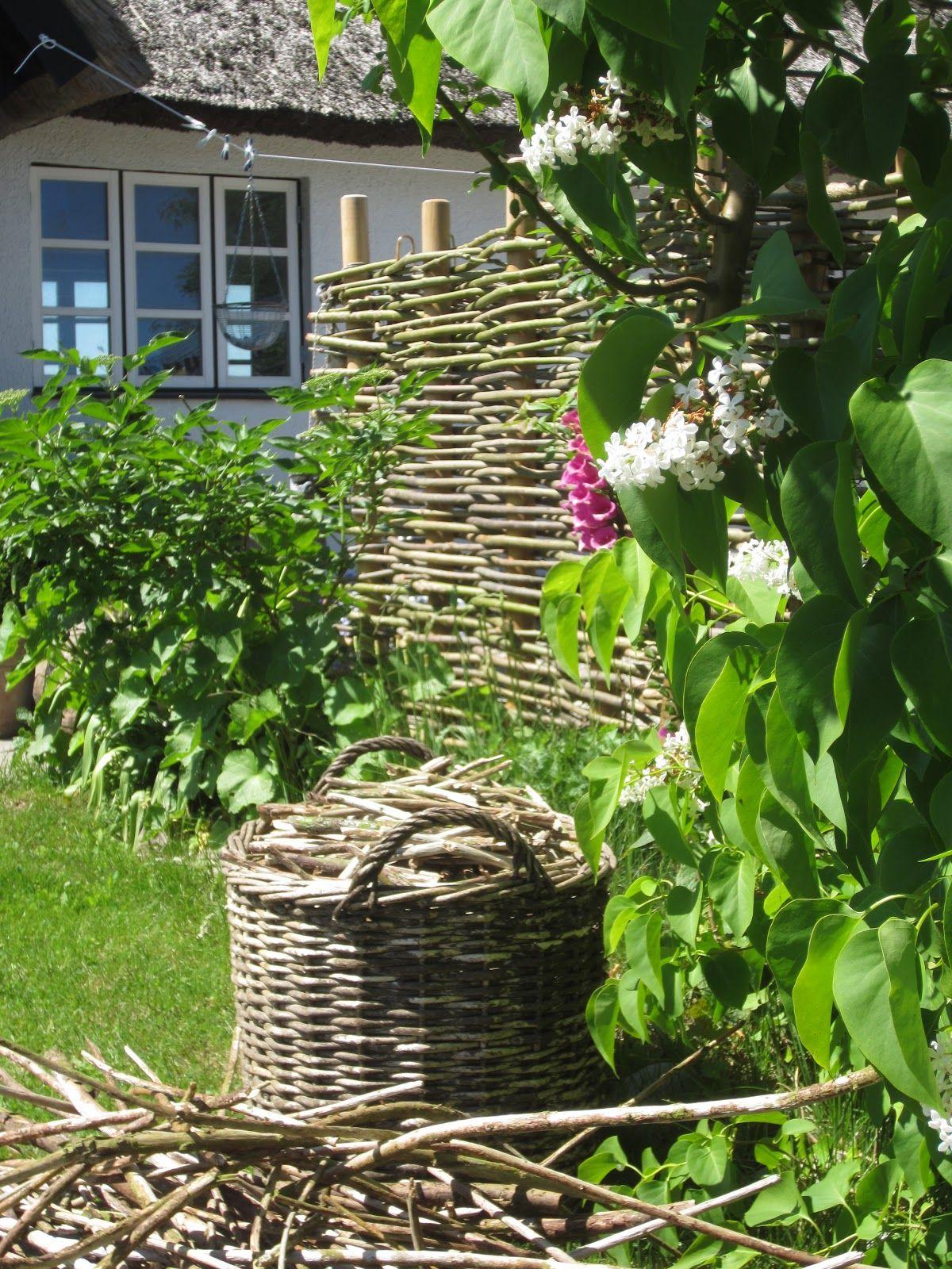 IMG 2983 JPG 1200—1600 Garten Sichtschutz und Zäune