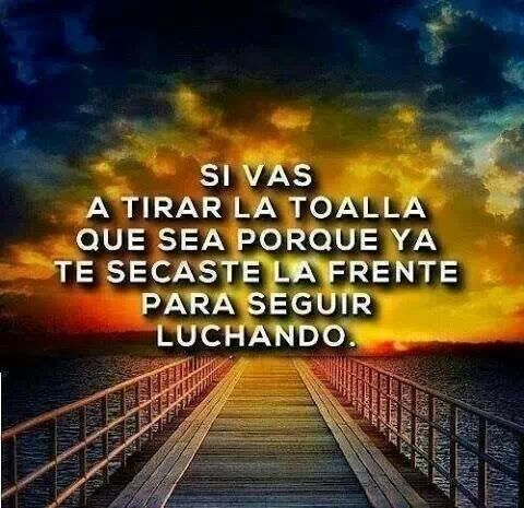Pin On Frases Quotes