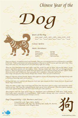 Chinese Zodiac Chinese Zodiac Year Of The Dog 9 00 From Magcloud Dog Chinese Zodiac Zodiac Years Dog Zodiac