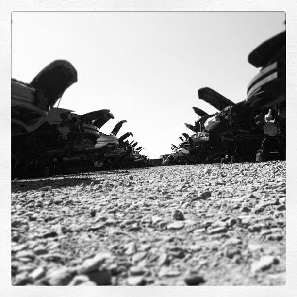 Junkyard. Louisville, Kentucky. Pull-a-part. #junkyard