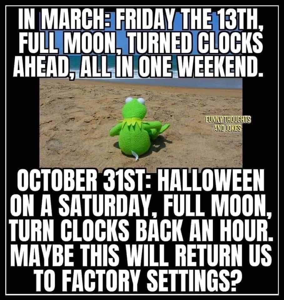 Pin By Kenda Secoy On The Rona Funny Halloween Memes Funny Thoughts Halloween Funny