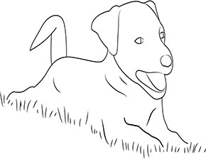 Ausmalbild Hund Zum Kostenlosen Ausdrucken Und Ausmalen Ausmalbilder Malvorlagen Hund Hunde Ausmalbilderh Ausmalbilder Hunde Ausmalen Ausmalbild