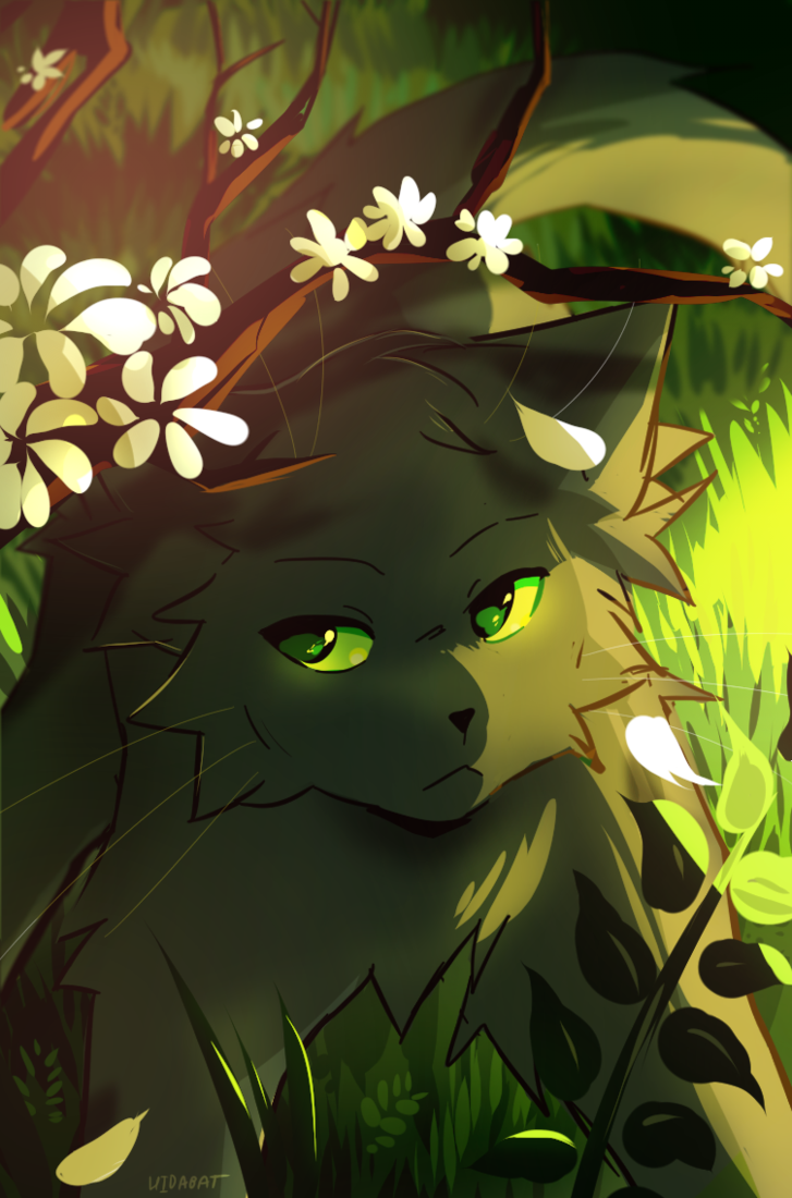 Hollyleaf by DragonsPurr | Warrior cats fan art, Warrior cat memes, Warrior  cats art