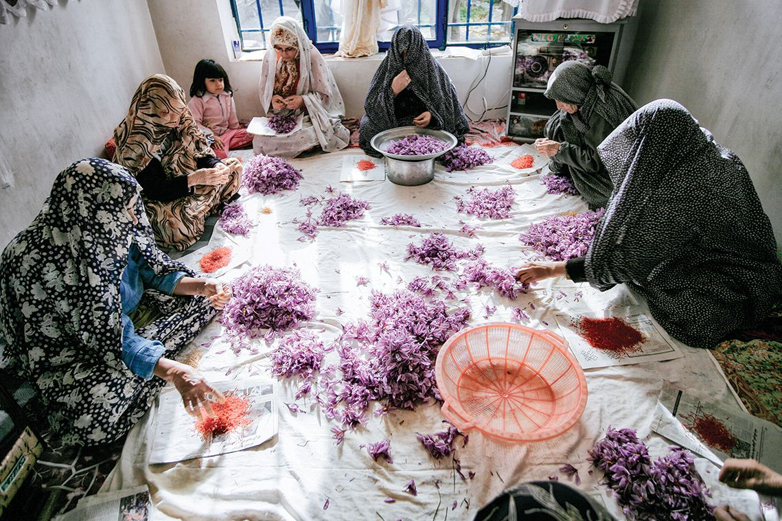 Woman sorting saffron (Iran)