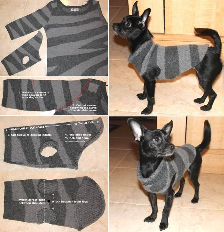 DIY Dog Coat Pattern Quick and Easy Project Video Tutorial
