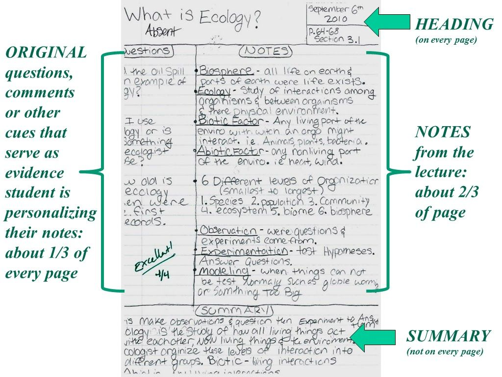 Pin By Dareen Agard On Cornell Notes