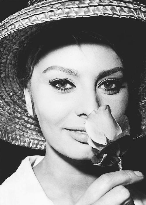 Sophia Loren c. 1961