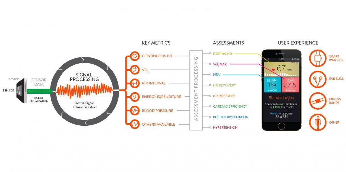 How Biometric Wearable Tech Works Biometrics Wearable Tech