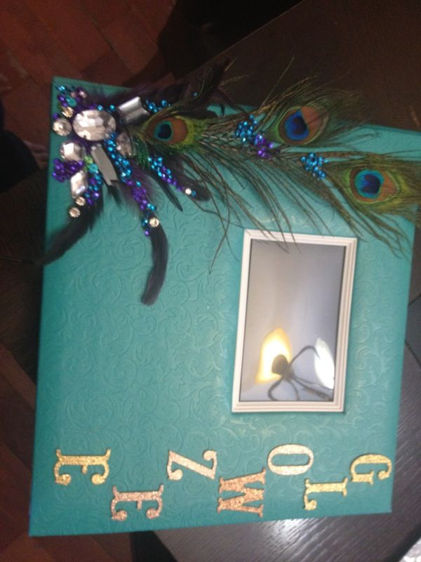 DIY picture album.. Got the album from Michaels and adorned the front cover with peacock feathers and jewles