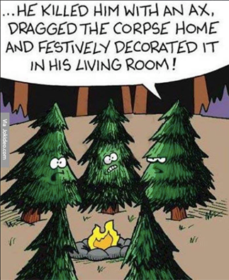 Evergreen Trees Discussing Christmas Christmas Memes Christmas Humor Holiday Humor