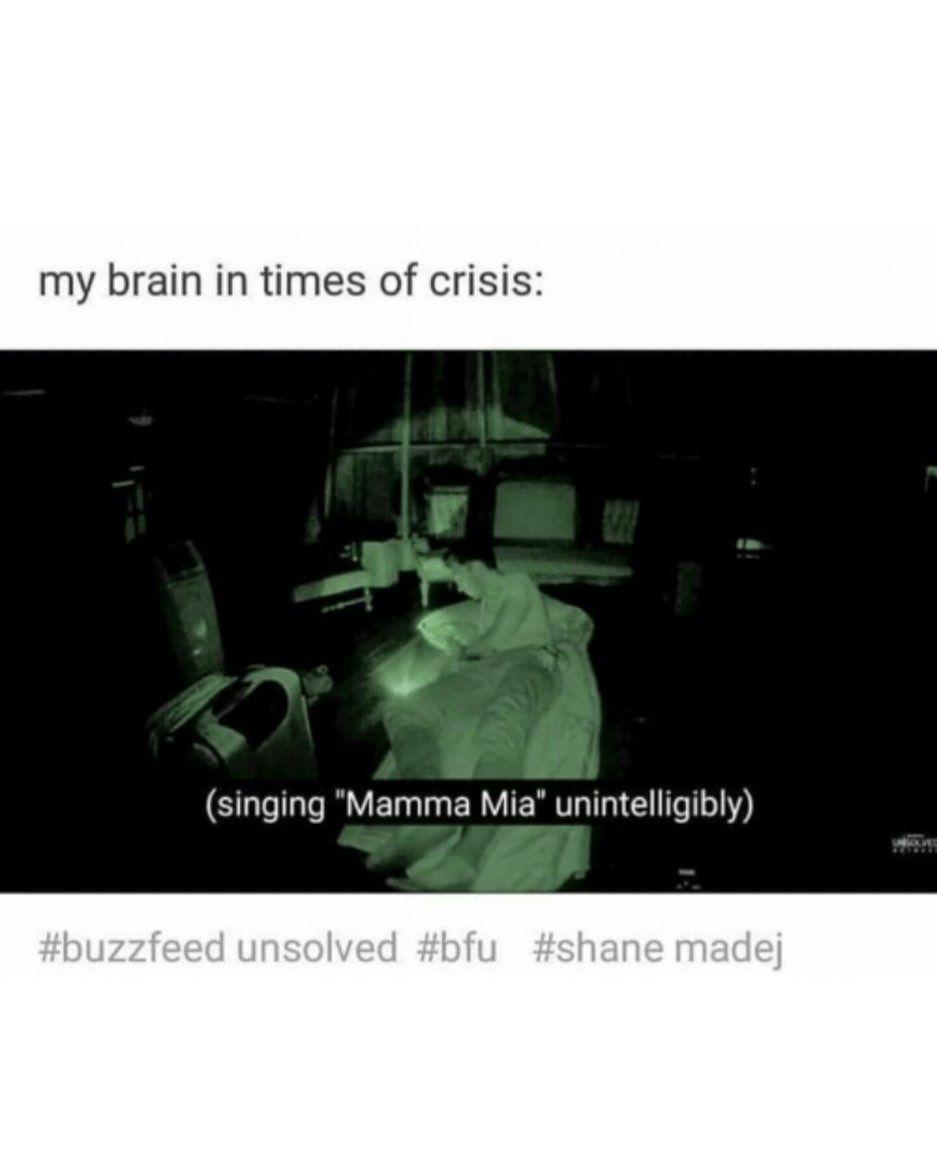My Mood For Exams Right Now Shaniac Bfu Buzzfeed Shanemadej Ryanbergara Buzzfeedmemes Buzzfeedunsolved Buzzfeedunsolved Memes Bones Funny Really Funny