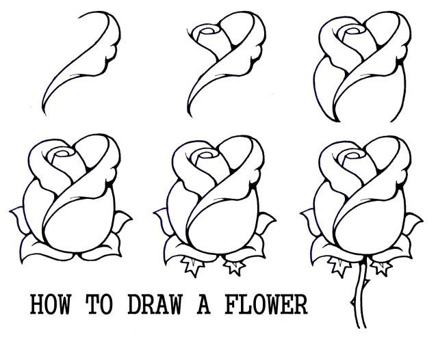 How To Draw A Mouth With A Rose Google Search Flower Drawing Beautiful Flower Drawings Drawings