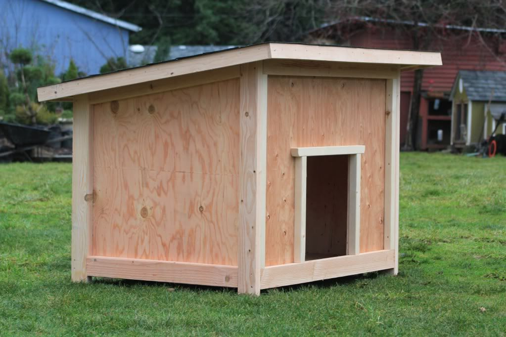 scintillating how to build a large dog house plans images - best
