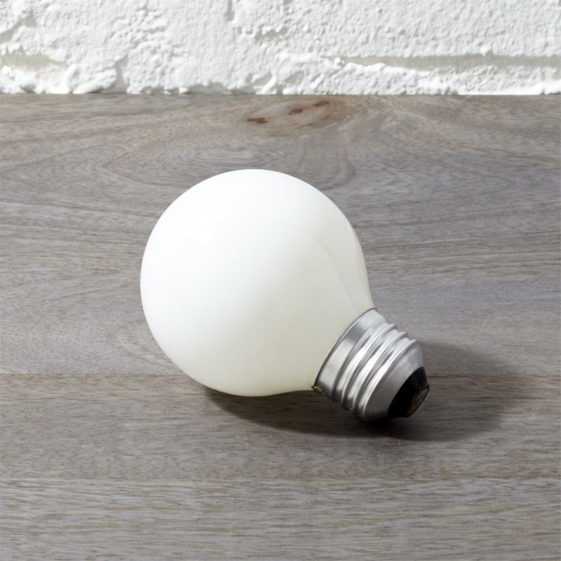 Cb2 G19 Frosted Globe 40w Light Bulb