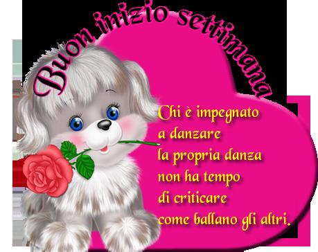 Souvent Buongiorno# Buona giornata# margherite# poeti# dediche#fiori  XX09