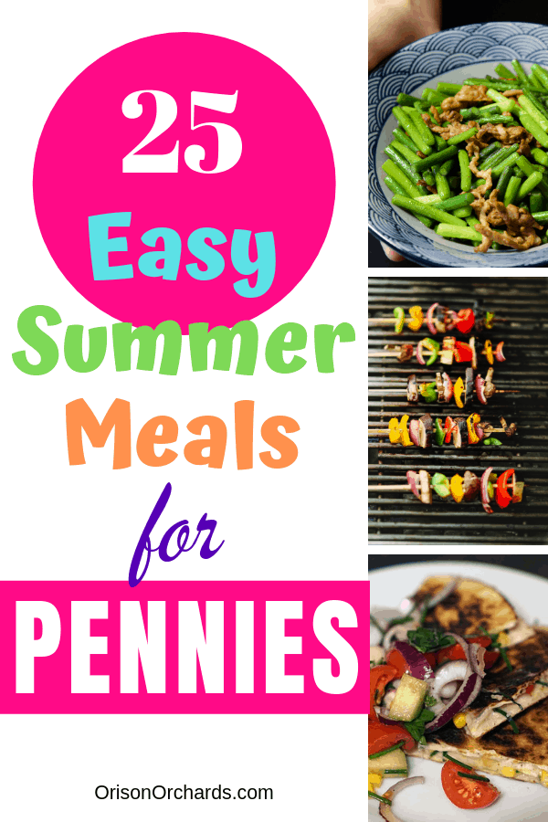 25 Easy Summer Meals For Pennies Orison Orchards Easy Summer Meals Summer Recipes Light Summer Meals