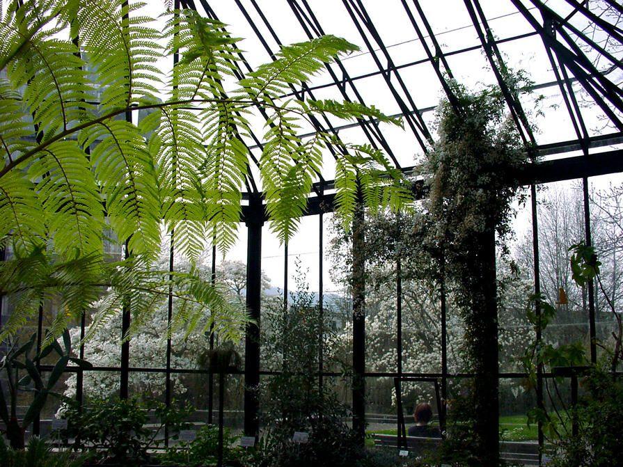 Old Botanical Garden Botanischer Garten Zurich