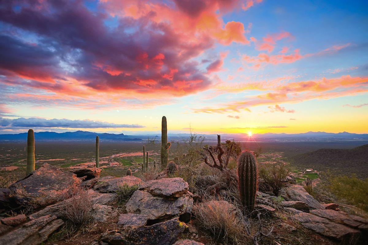 Arizona Sonoran Desert Sunset