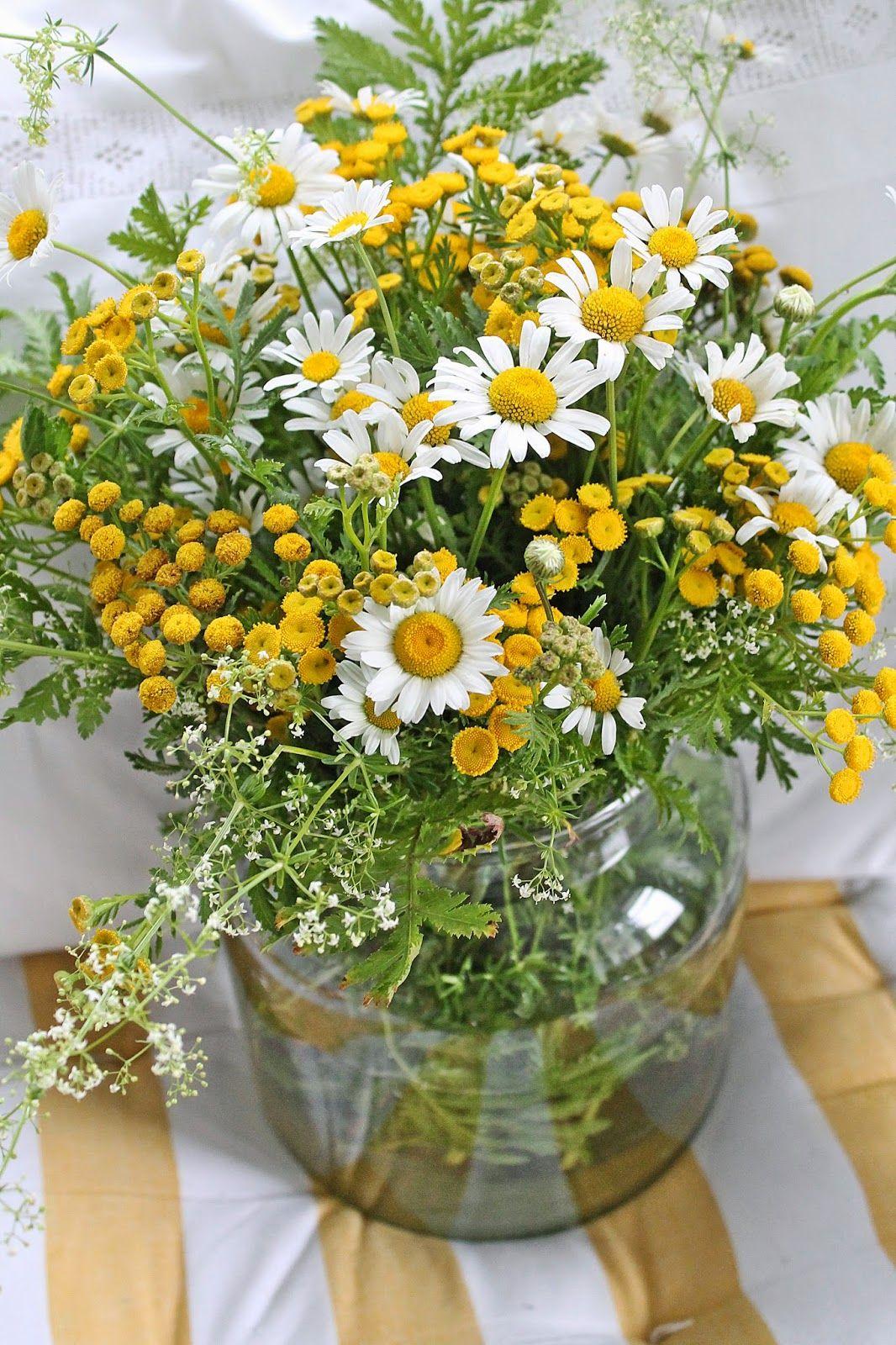 idee f r die blumen wiesenblumen wie kamile blumenschmuck hochzeit pinterest wiesenblumen. Black Bedroom Furniture Sets. Home Design Ideas