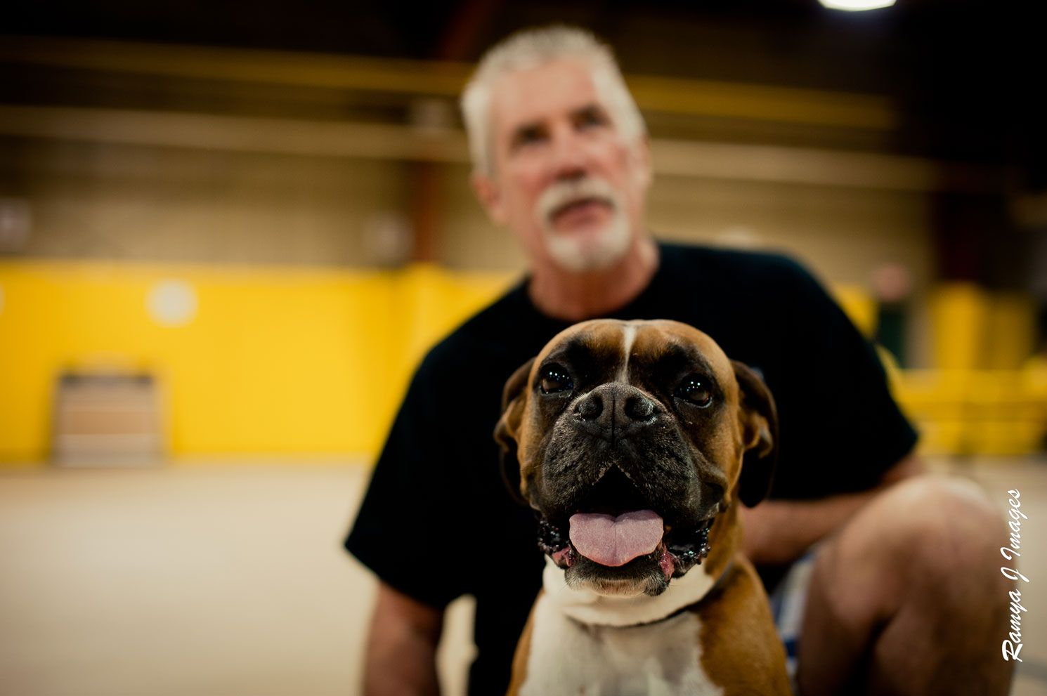 Tanum And His Human Ken Fyfe Of Boxer Rescue Ontario A Furever