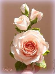 imagenesde rosas