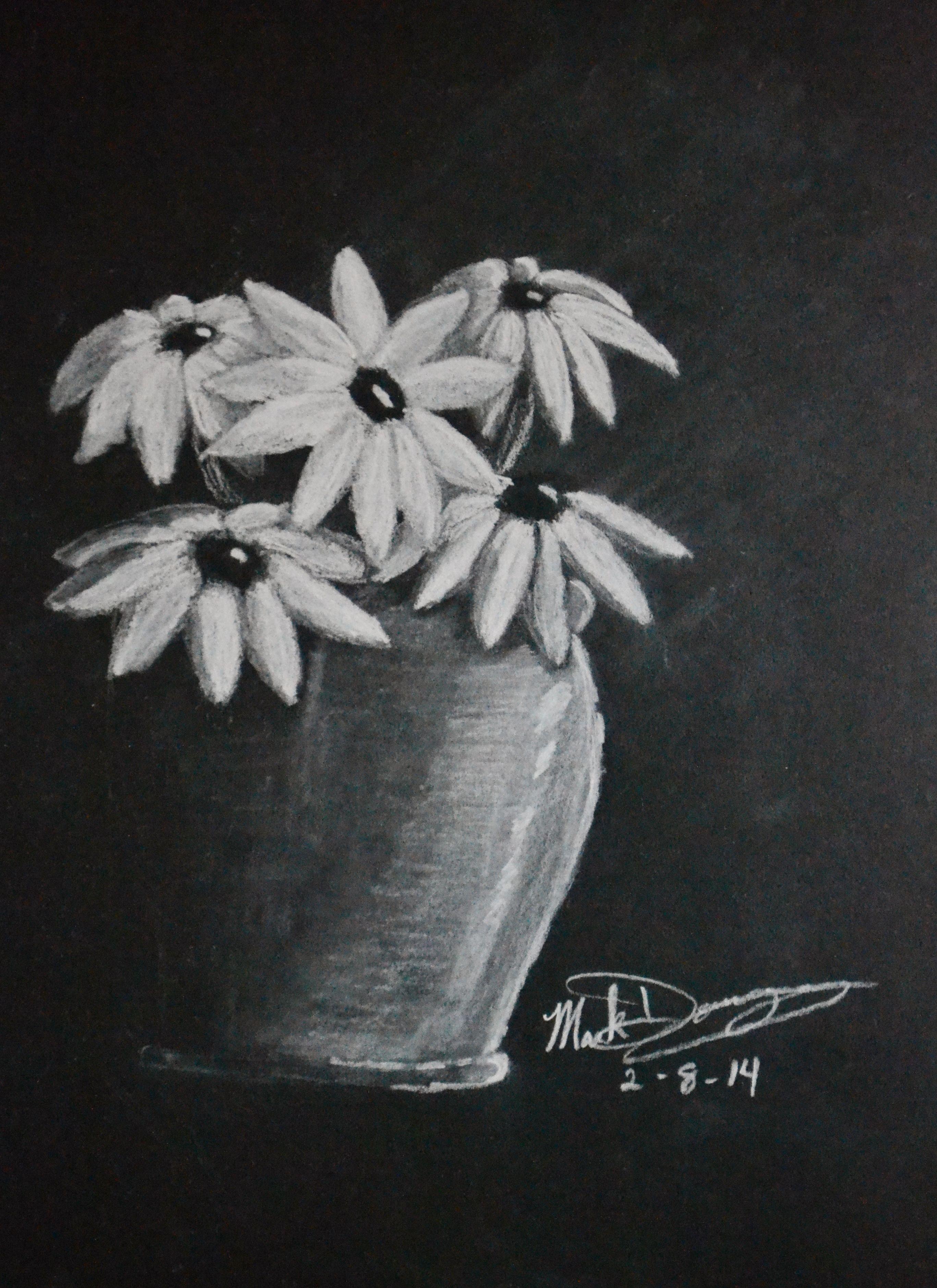 The Flower Pot 9x12 White Charcoal On Black Paper Pencil Art