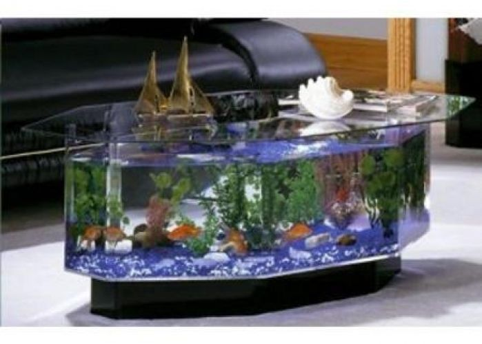 Gallon Aqua Coffee Table Aquarium Fish Tank Acrylic Living Room - Aqua coffee table aquarium tank