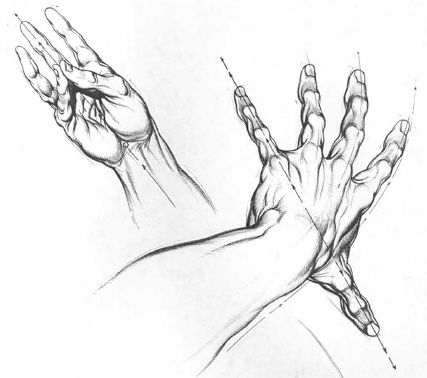 Burne Hogarth Drawing Dynamic Hands 15 Character Drawing Hand