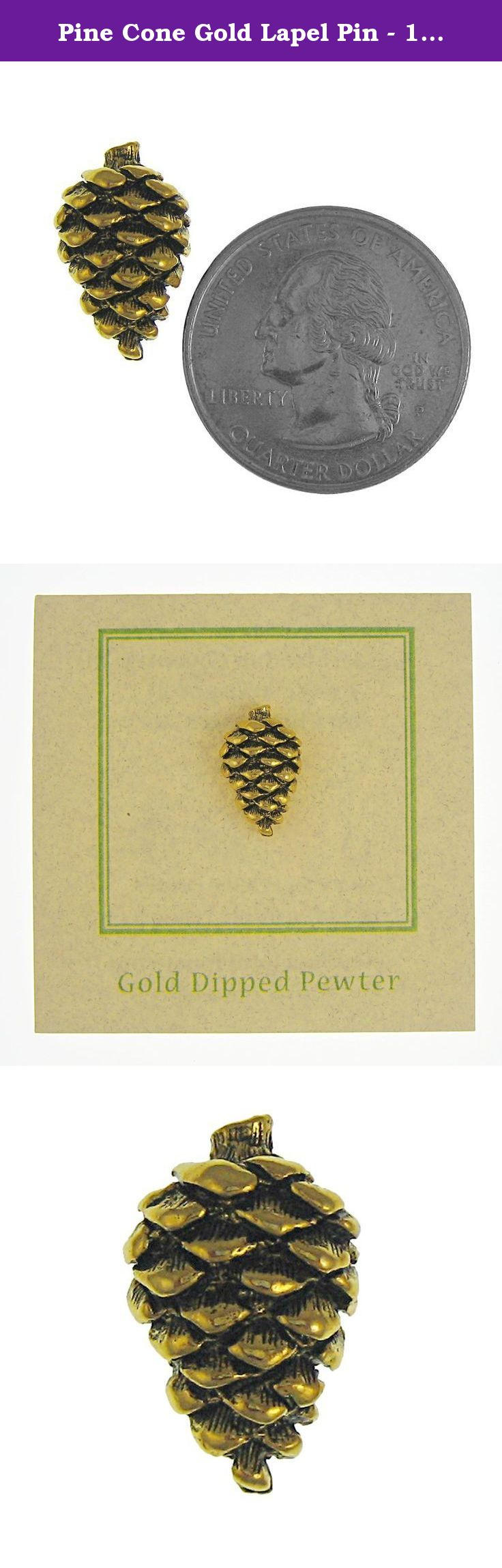 Superb Pine Cone Gold Lapel Pin   100 Count. The Longest Lived Pine Trees Known