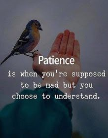 Patience is when you are supposed to be mad but you choose to understand.