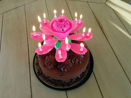 Lotuscandles Com Amazing Flowering Musical Birthday Candles Beautiful Birthday Cakes Lotus Birthday Candle Birthday Candles